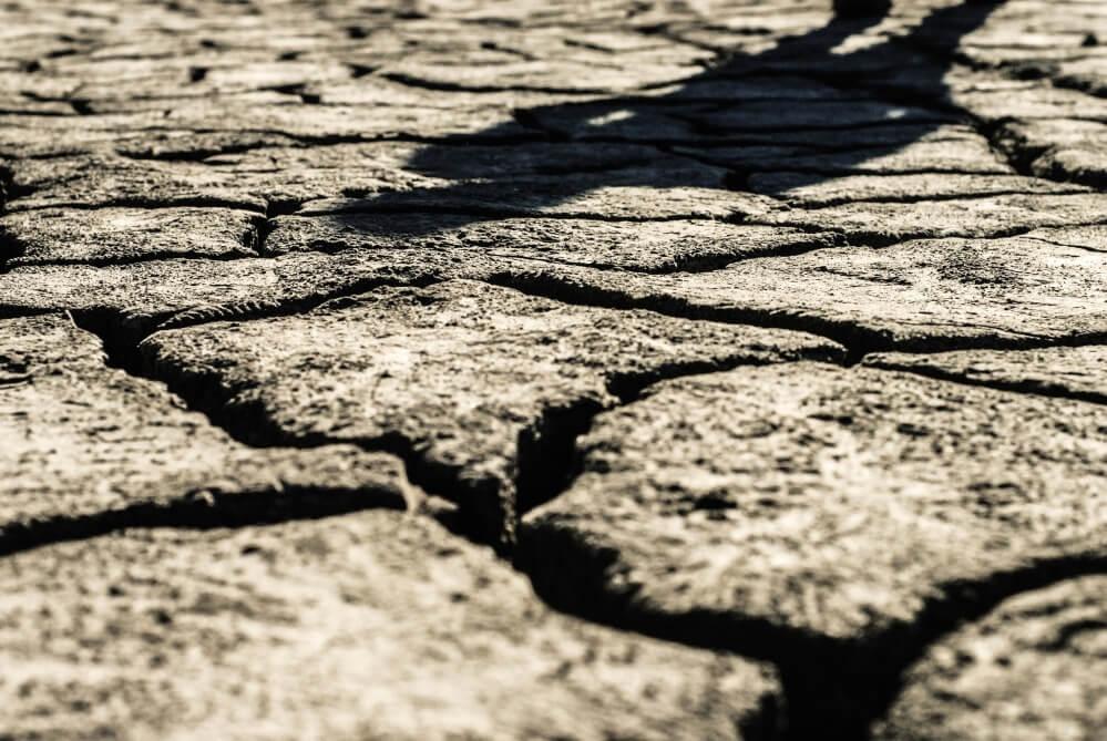 Lakukan Pengolahan dan Pengeringan Tanah Kolam Lele