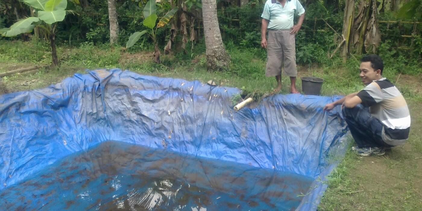 Jenis Jenis Kolam Budidaya Ikan Lele