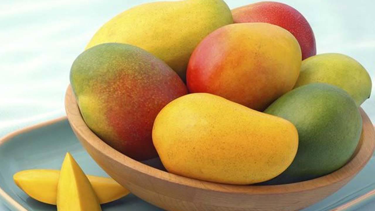 Jenis-jenis Mangga