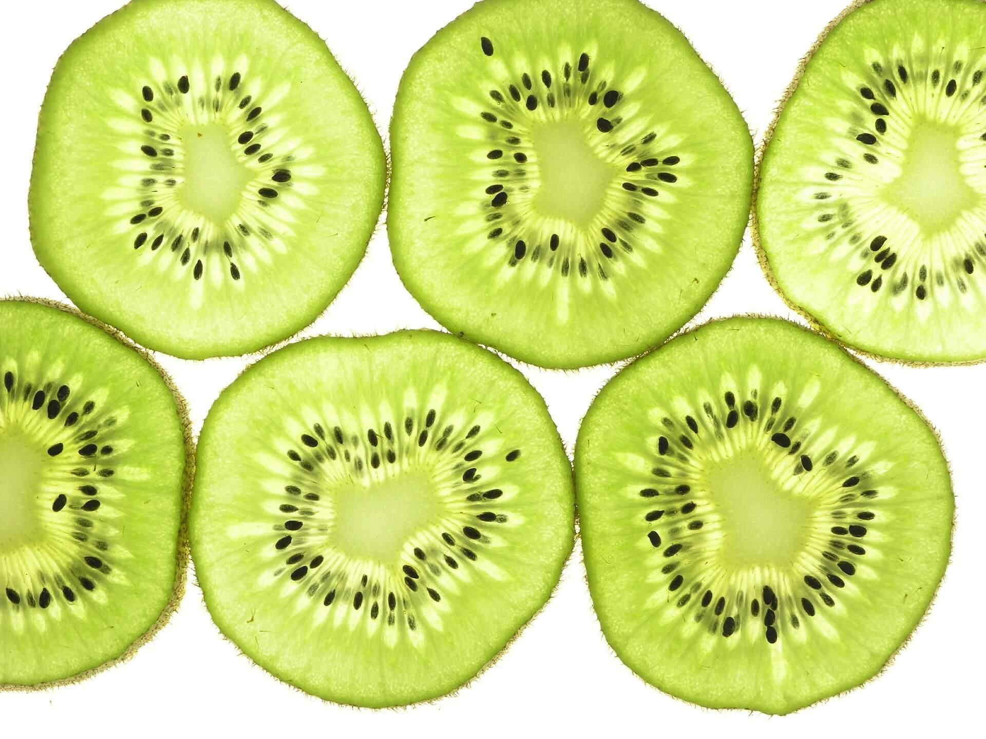 Persiapan Kiwi dari Biji