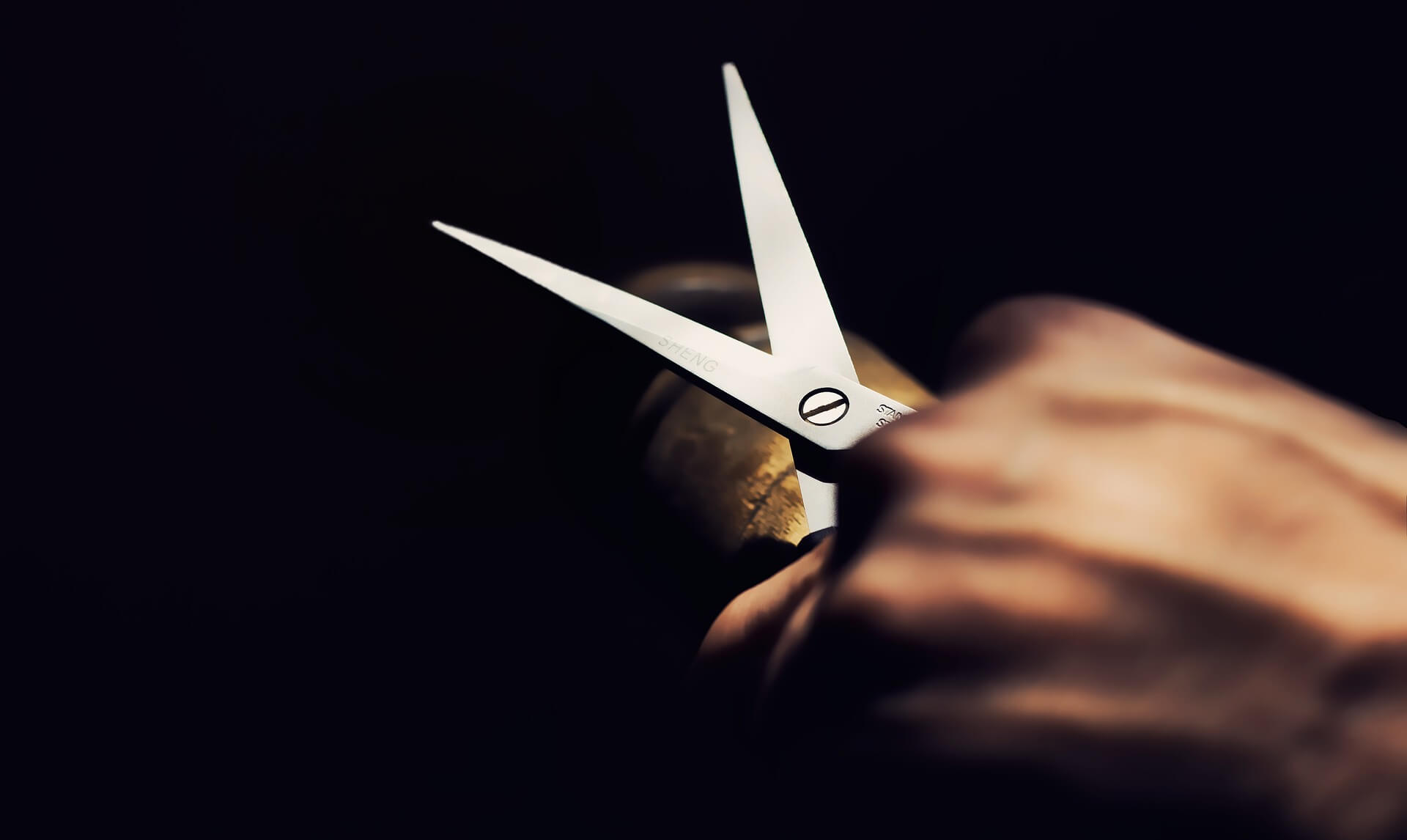 Pisau, Gunting, Cutter Untuk Peralatan Sawi Hijau Hidroponik