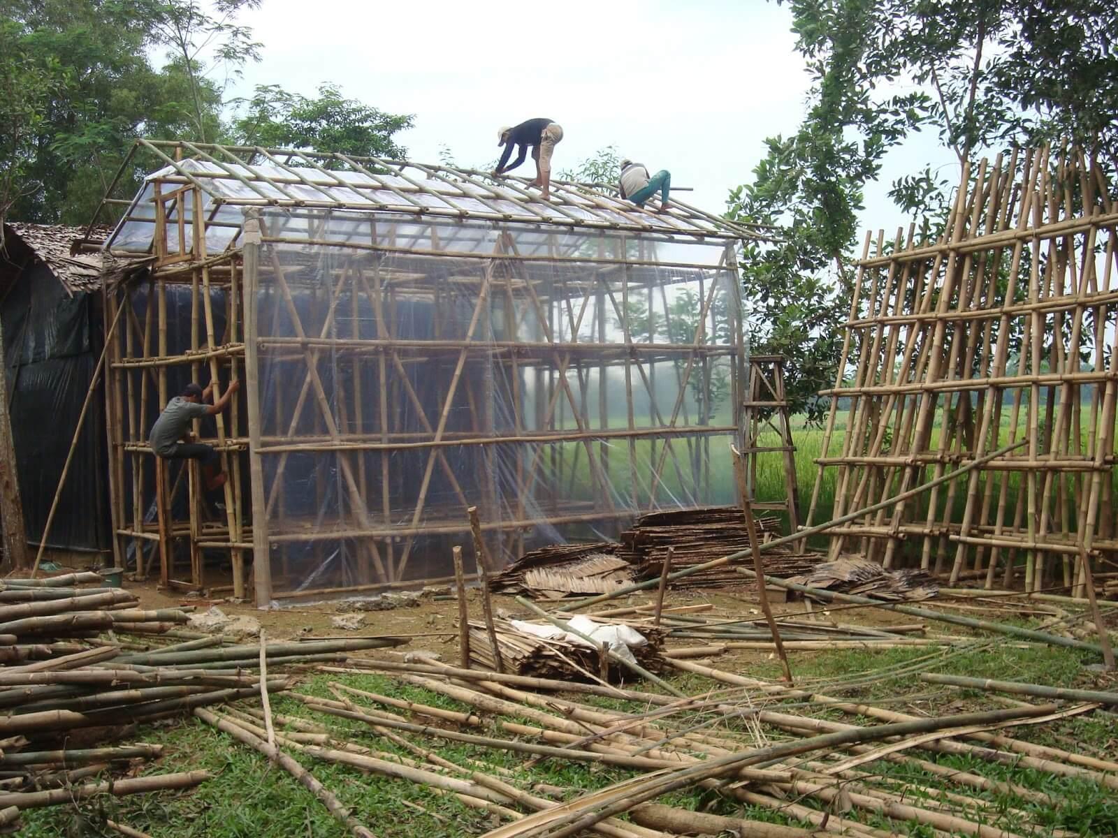 Membuat Kumbung Untuk Budidaya Jamur Merang