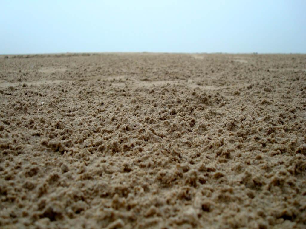 Pengolahan Dengan Tanah Gembur Untuk Menanam Cabe Merah Keriting